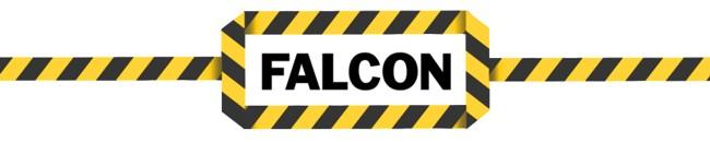 Falcon Sale Online