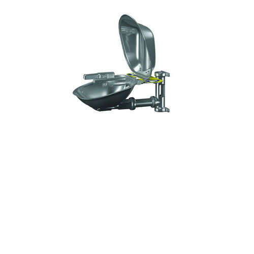 Bradley S19224SC Safety Eye/Face, Stainless, Wall Mount